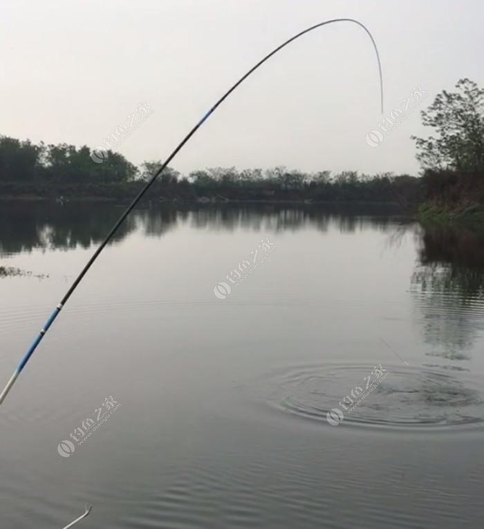 魏老板筏钓鱼排