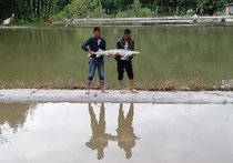 渔乐圈垂钓园