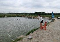 蔡厝乡钓鱼场