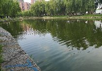 青年湖垂钓园