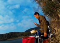 《麦子钓鱼》鱼上浅滩 深水双飞鳊鱼