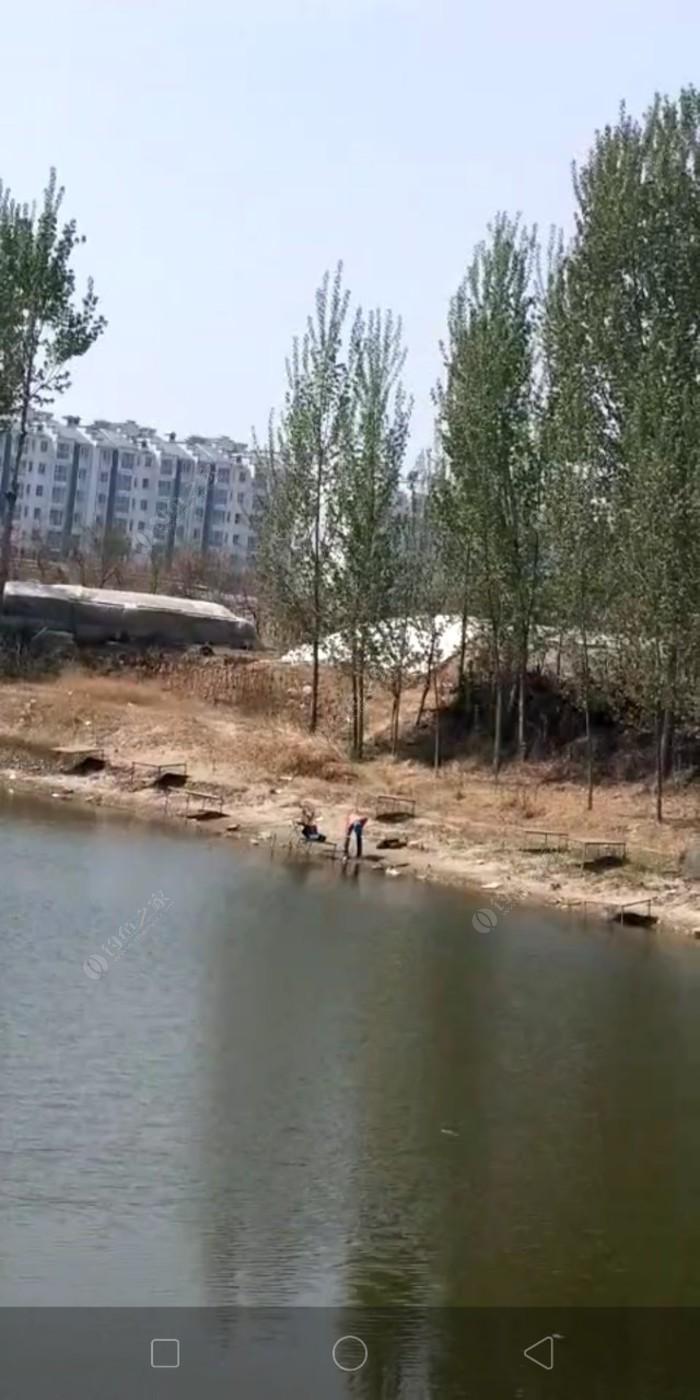 乐亭三丁庄黑坑垂钓园
