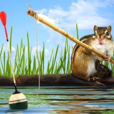 钓鱼新手唐