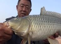 《游钓中国》第四季 第9集 小鱼闹窝忧人心 变换钓法终得鱼获
