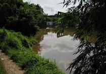 龙溪河天气预报