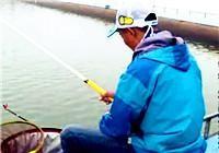 《崩豆百场黑坑系列》(一)天津海棠湾垂钓