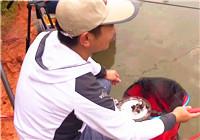 《鱼资渔味》20170815 68人黑坑赛,葡萄做饵克服鱼停口难题