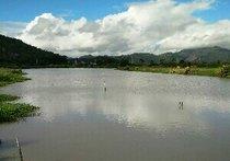 西沿村塘河