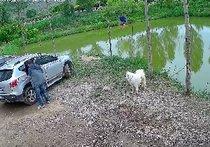 甘谷金钓鱼塘