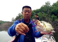 《游钓中国》第四季 第15集  大毛老师初探丹江口
