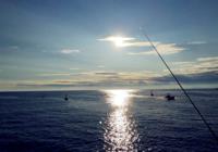 钓鱼人在海域做钓小技巧(下)