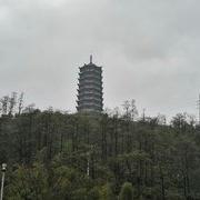 正是东江湖垂钓青、黄尾的季节之个人总结分享!