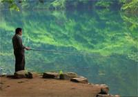 鳊鱼为什么这么好钓 一钓就是一箩筐