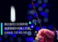 《钓鱼公开课》第14期丨黑坑作钓怎么调漂