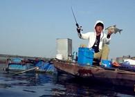 《游钓中国》第四季 第13集  泔河抛竿遇困境 转变钓法显奇效